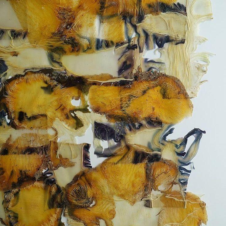 Een mix van koolraap schillen en bloemkool en rode kool stronk. Er is nog veel te combineren en te ontdekken! - Red cabbage and cauliflower stumps and rhutabaga peels. I love making new combinations! - #angeliquevandervalk #vegetableworks #studioangeliquevandervalk #art #visualart #abstract #abstractart #minimalist #contemporaryart #waste #material #detail
