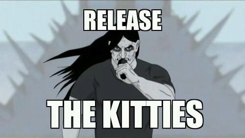 how i feel some days on imgur as a metal fan... goddamn kitties - Imgur