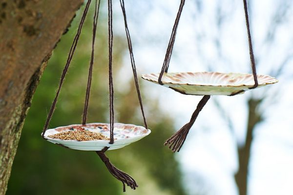 Upcycle vintage plates into quaint bird feeders with these easy steps - Homemaker
