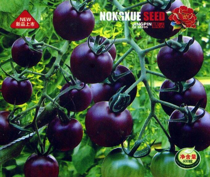 10 Best Cherry Tomaten Images On Pinterest Cherries 400 x 300