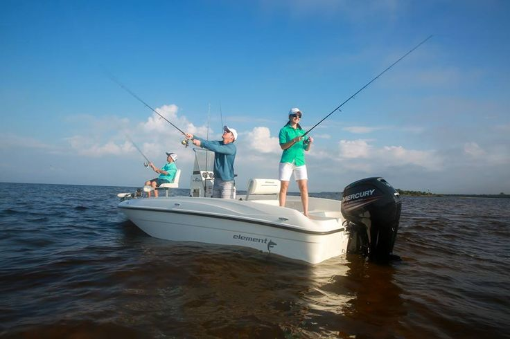 Read This Bayliner Element Review Before You Buy a Boat! http://www.azboating.us/168/read-bayliner-element-review-buy-boat.html