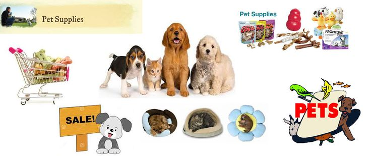At PetzNow we offer a huge inventory of pet products online at a attractive price. At our store of pet products online we stock almost every pet related need like food, clothing, medicine, accessories and a lot more. Visit us at http://petznow.com/ and choose from our vast collection of pet products online for your much loved pet.