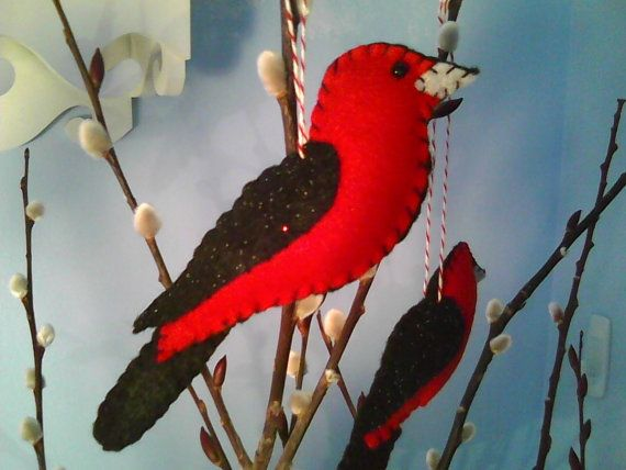 Tángara rojinegra sentía ornamento del pájaro