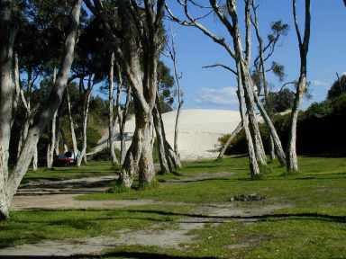 campingimagelarge.jpg 384×288 pixels