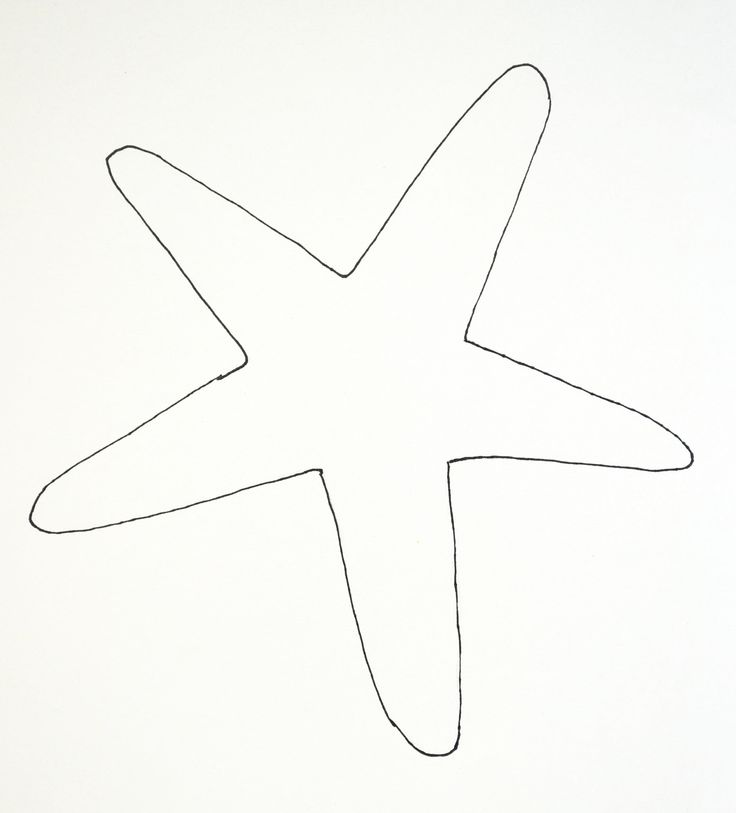 starfish coloring pages for tracing - photo#17