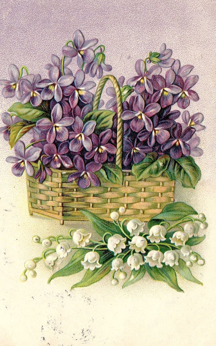 Embossed Antique with 1 cent stamp Lilly of The Valley basket violets postcard