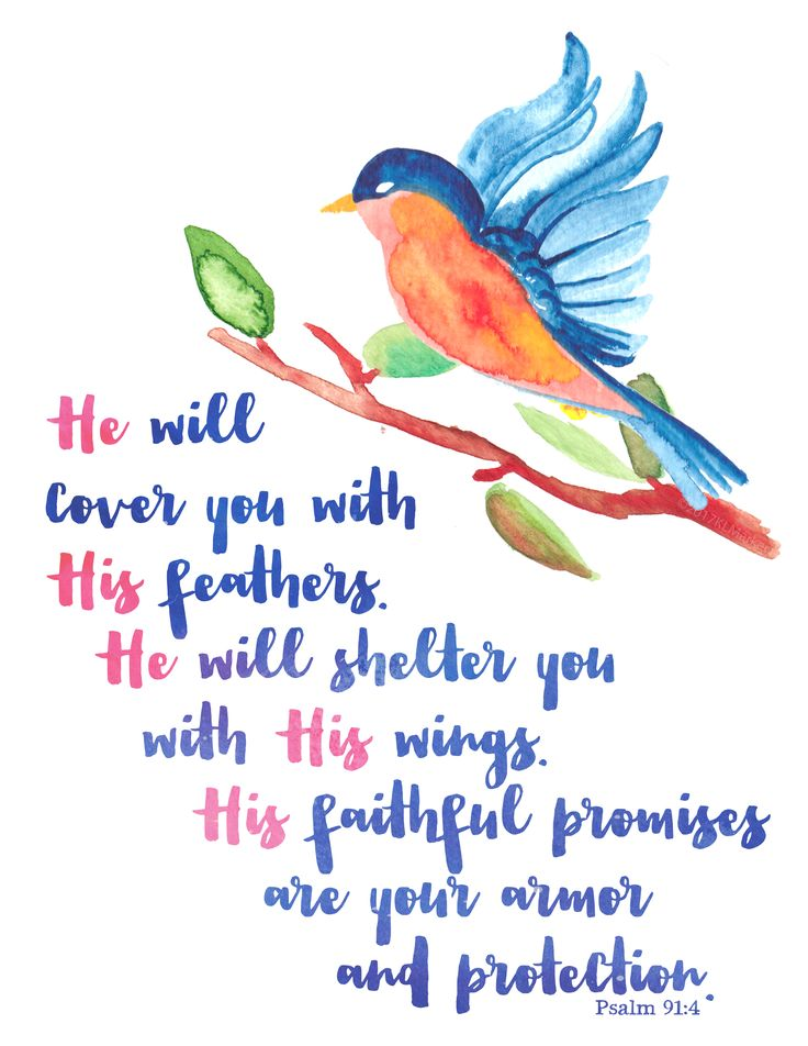 picture regarding Psalm 91 Printable identify Aspects With Wings Psalm 91 -