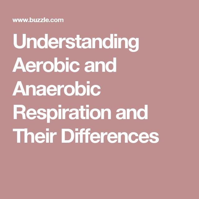 Understanding Aerobic and Anaerobic Respiration and Their Differences