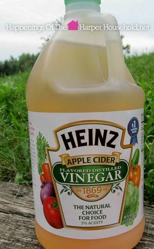 5 Uses for Heinz Apple Cider Vinegar