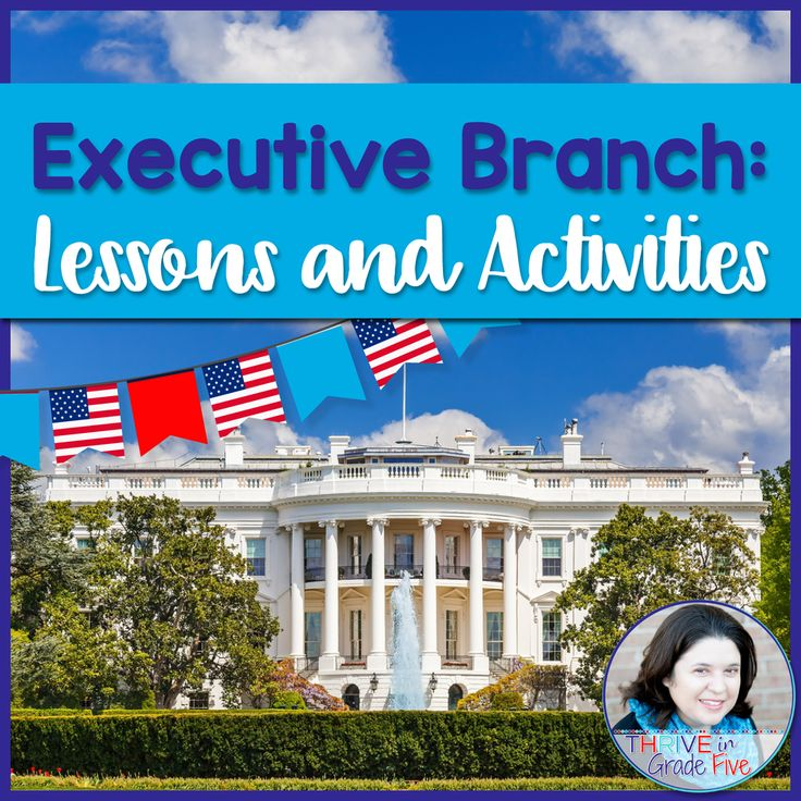 The executive branch has never been easier or more fun to teach! This activity pack contains everything you need to teach this part of the branches of government.