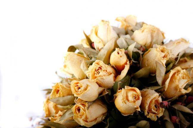 M s de 25 ideas incre bles sobre preservar ramo solo en - Como secar un ramo de rosas ...
