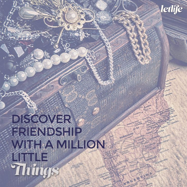 Discover friendship with a million little things.