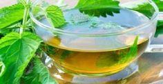 Aυτό το φυτό οφελεί την καρδιά, το νευρικό σύστημα και εμποδίζει την πρόωρη γήρανση