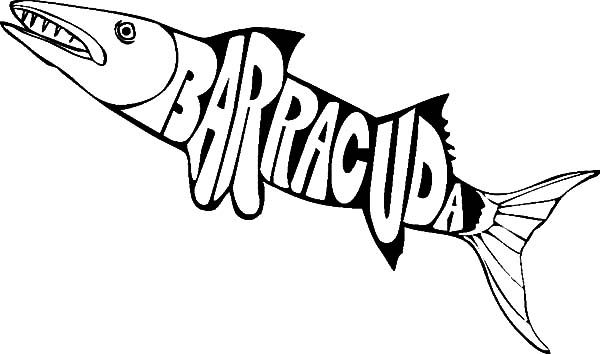 Barracuda Fish Colouring Page For Kids Barracuda Fish Colouring
