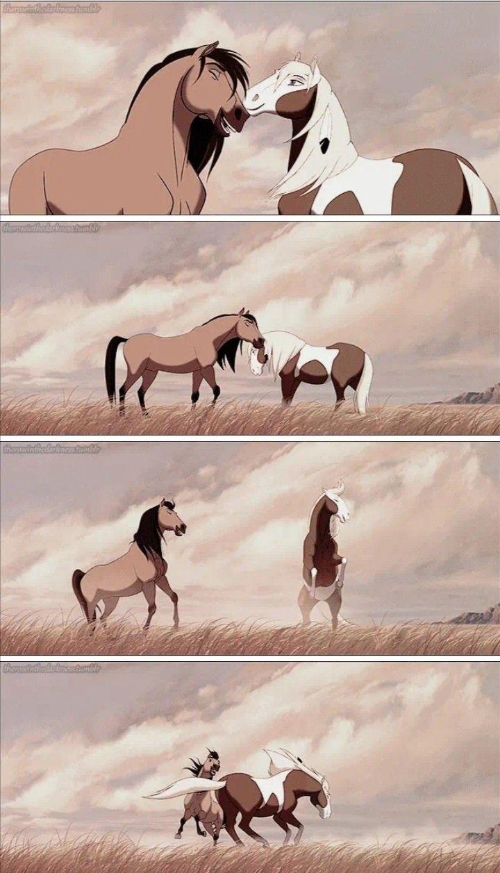 Spirit And Rain Cute Horse Pictures Spirit The Horse