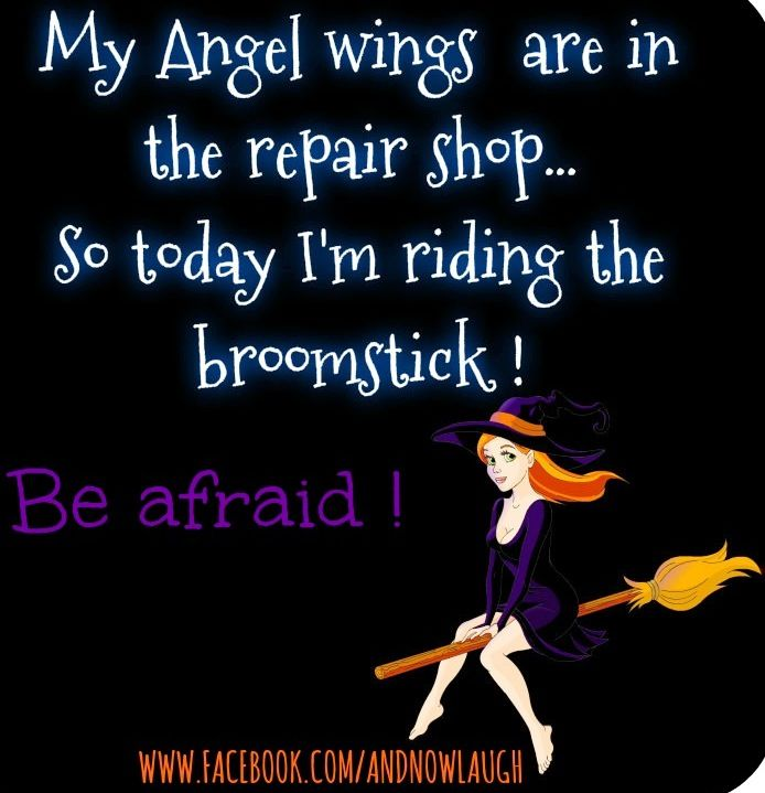 162 Best Images About Witch Humor On Pinterest