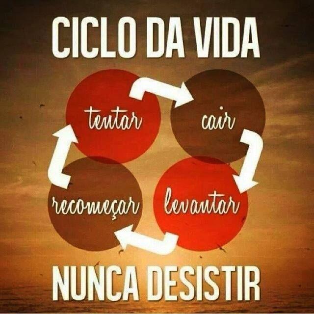 #Ciclo da #Vida