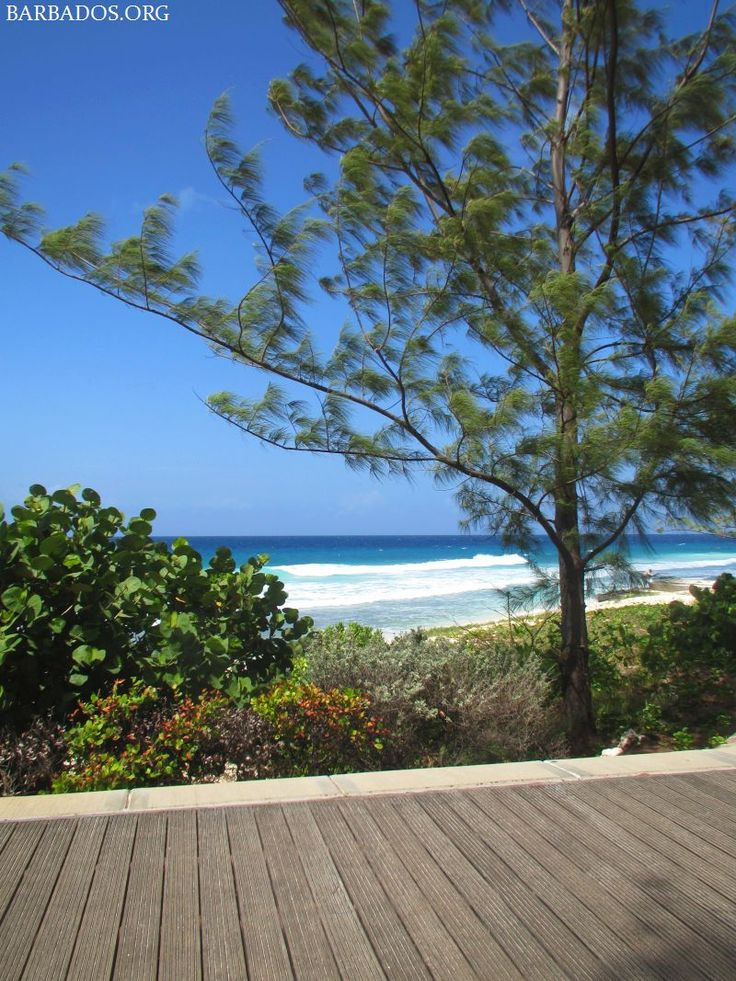 Unwinding on the boardwalk along the south coast of Barbados