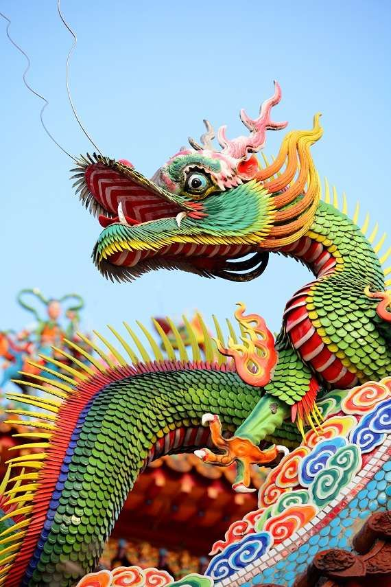 174 best Dragons images on Pinterest  Chinese dragon Dragon