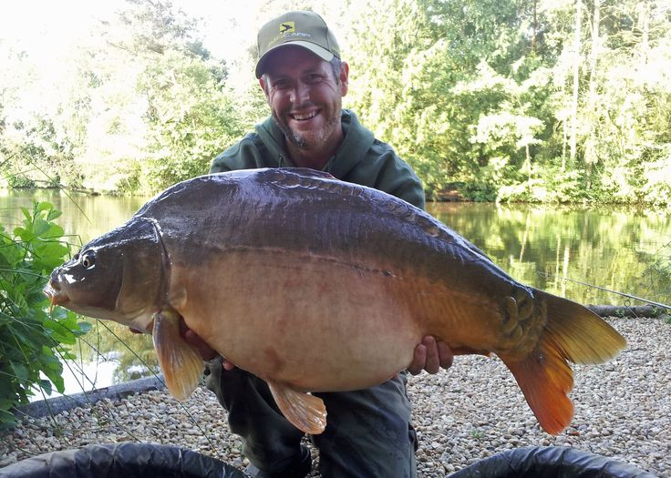 This is Dink, caught by James on his first carp fishing holiday at Beausoleil in July 2013. Weighed in at 33lbs 8oz and taken on 2 x 22mm homemade Blue Oyster baits over chops and pellet.  www.frenchcarpandcats.com