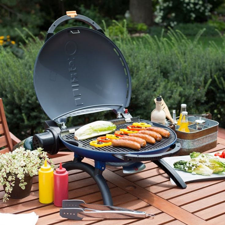 Napoleon Portable Propane O Grill 2000   The Product Specialists At  Hayneedle Have Been Extensively Trained By The Manufacturer Of Napoleon  Grills.