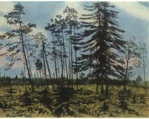 Finland with a blue sky, 1910