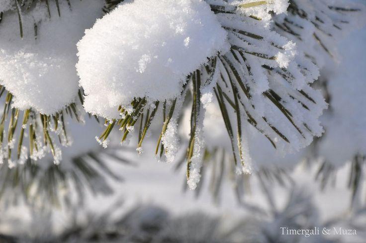 Снежный наряд...