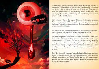 """Hernan Ergueta: Ultimos detalles para la publicación de """"The Burni..."""