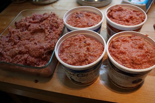 Making crazy awesome homemade cat food | A Path With Paws