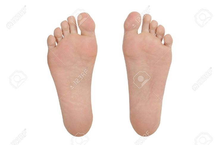 33 best Anatomy Feet reference images on Pinterest | Anatomy ...