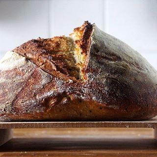 Après la tronche de cake, le Bâtard 🖖🏼