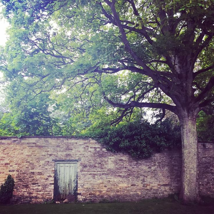 I always love a gate in an old stone wall, walking on the way to the pub  @mccormickcharlie