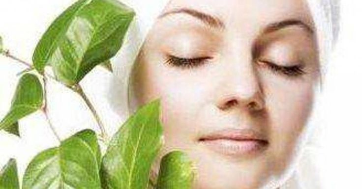 The Best Natural Skin Care Brands