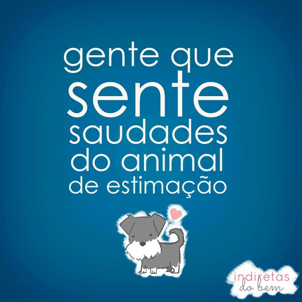 gente que sente saudades do animal de estimacao