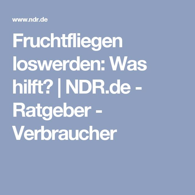 Fruchtfliegen loswerden: Was hilft? | NDR.de - Ratgeber - Verbraucher