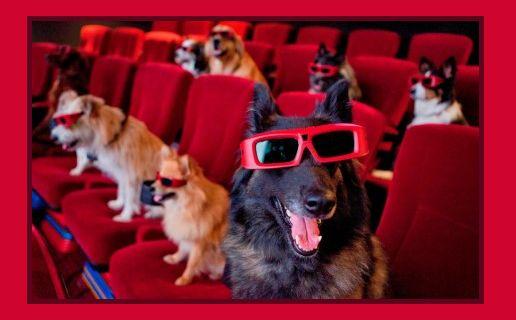 Cinema quiz: indovina qual è il film!  GIOCA QUI>>http://tormenti.altervista.org/cinema-quiz-7b/