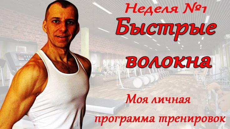 СЕЛУЯНОВ. Гликолитические мышечные волокна. Программа тренировок. (моя л...
