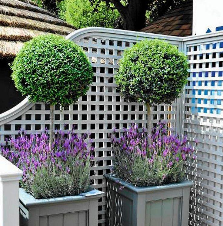 Donice Na Balkon I Taras Te Drewniane Skrzynie Pomalowano Na Kolor Pasujacy Do Wystroju Balkonu I Barwy Lawendy Natural Garden Most Beautiful Gardens Plants