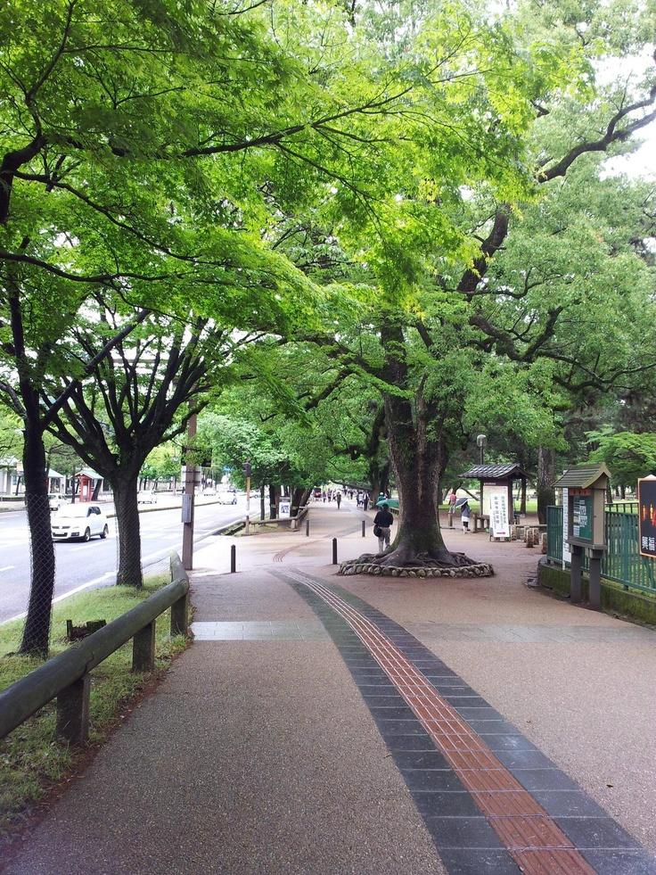 나라 관광센터 근처