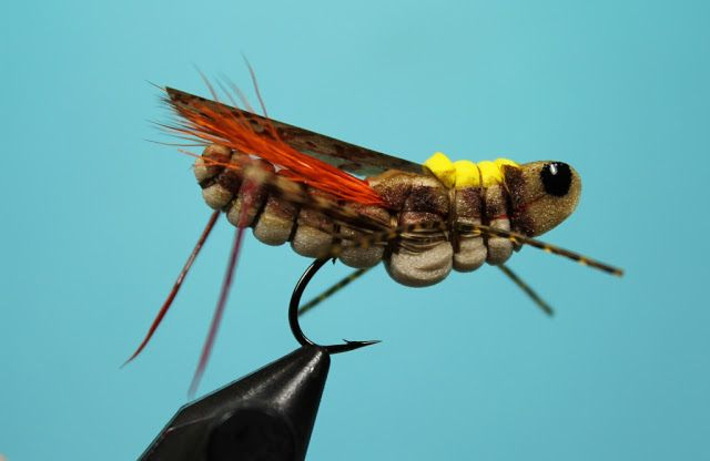 Fly Tying Nation