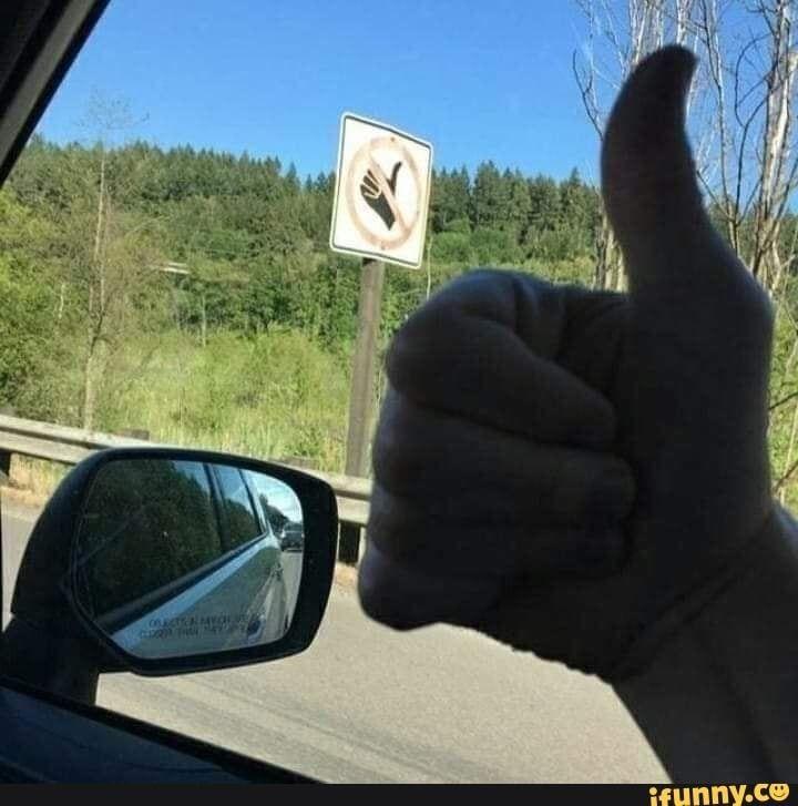 Brazilian Memes, kpop, Hilarious Memes, True, Lustige Tiere, Memes, Danke, Memes …   – Animal Memes