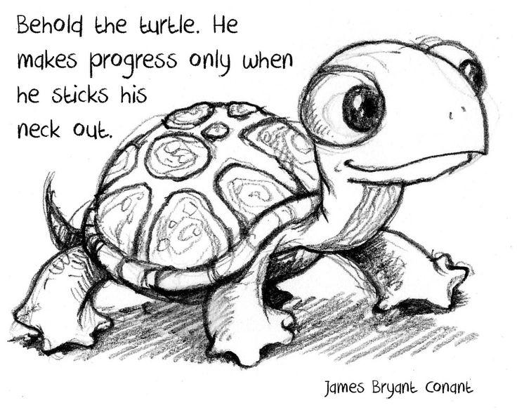 Turtles #cute #animals #illustration #drawings #sketch