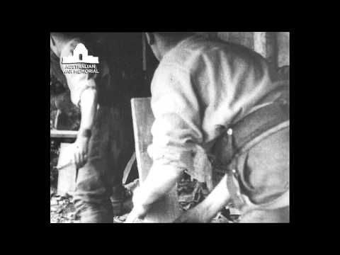 A collection of 12 original and contemporary footage videos from the Australian War Memorial presented through Youtube.