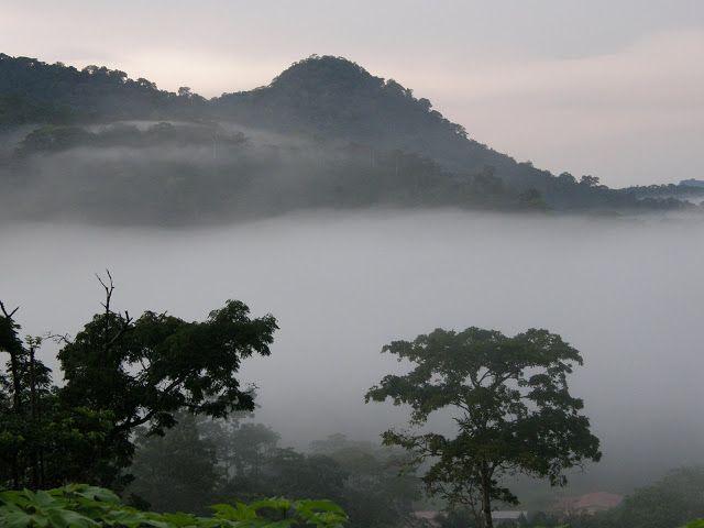 Paisaje del Parque Nacional de Monte Alén, Guinea Ecuatorial.