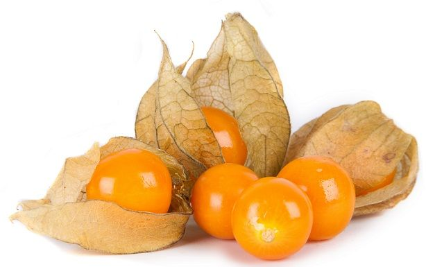 Physalis was originally discovered and named in Peru and was known to the Incas. A herbaceous perennial which grows wild in the Andes. Its name originated in Australia after its journey from South Africa to the Cape of Good Hope even though it is not a native to the Cape.