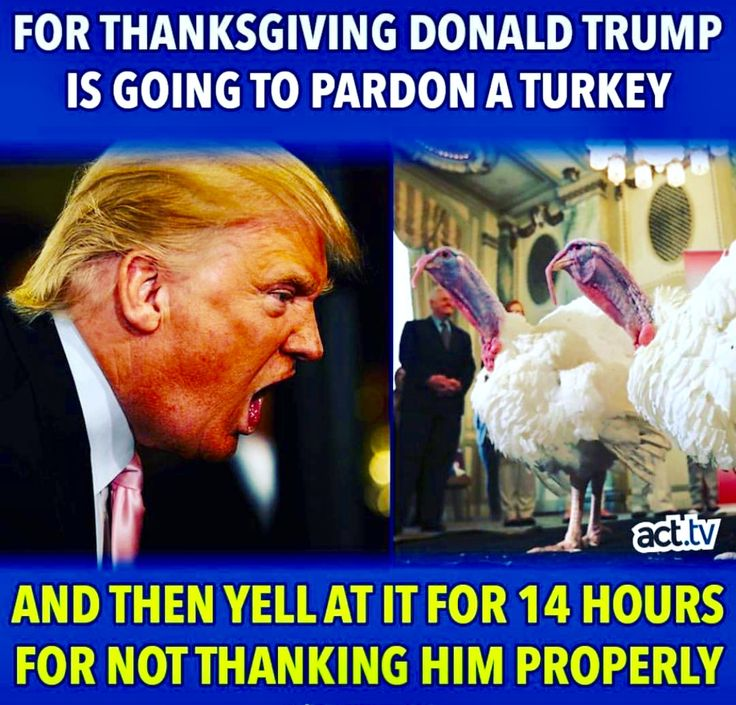 For Thanksgiving Trump is going pardon a turkey and then yell at it for 14 hours for not thanking him properly.
