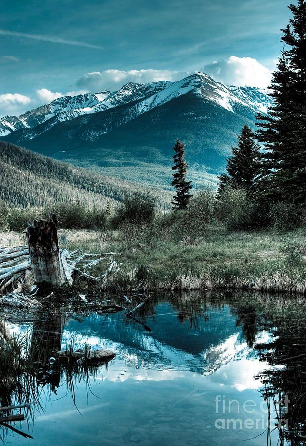 ✮ Canadian Rockies reflect on a pond near Vermilion Lake