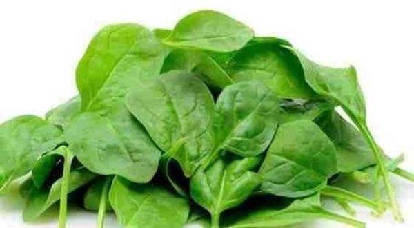 فوائد الجرجير العظيمة للبشرة و العظام و القلب ميكساتك Spinach Benefits Spinach Juice Spinach
