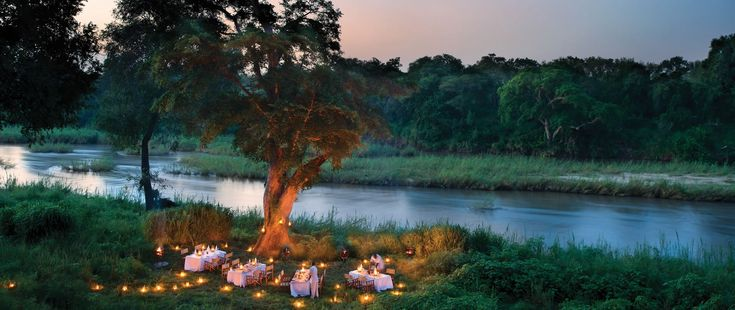 To safari in a public reserve – such as the Kruger National Park proper – or to safari in a privately owned territory – such as Londolozi Game…