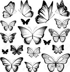 Image result for tiny butterfly tattoo